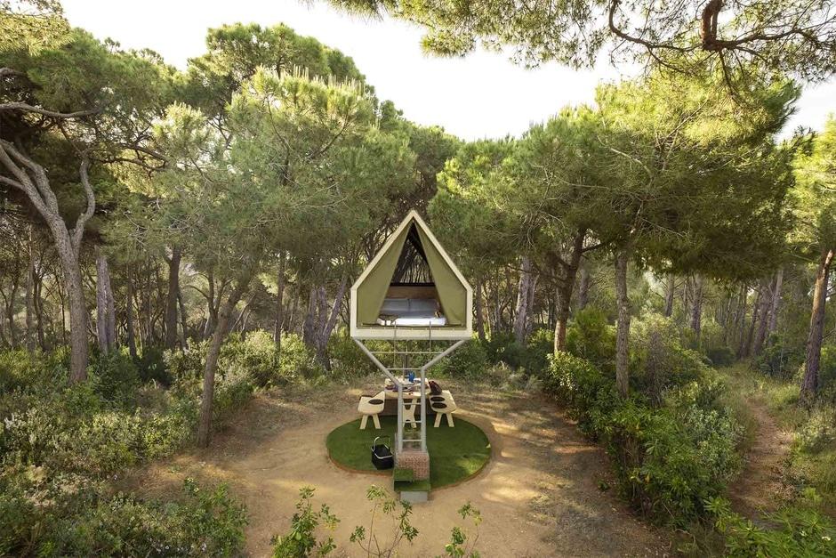 Cabana d'arbre